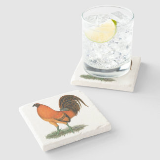 Gamecock Ginger Red Rooster Stone Coaster