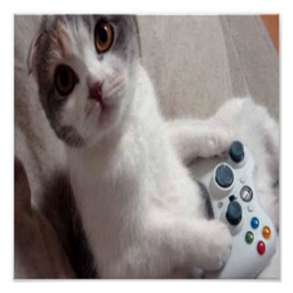 Gaming Cat - poster
