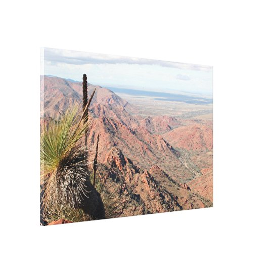Gammon Ranges, Outback, South Australia Canvas Print