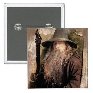 Gandalf With Staff Pins