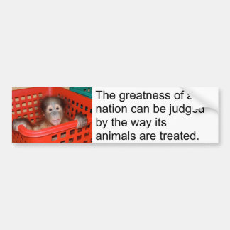 Gandhi Animal Quote Cute Baby Bumper Sticker