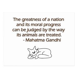 Gandhi Animals Quote with Cat Postcard