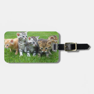Gang of Adorable Kittens Luggage Tag