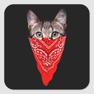 gangster cat - bandana cat - cat gang square sticker