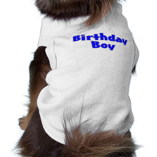 Garçon d'anniversaire (bleu) vêtement pour animal domestique