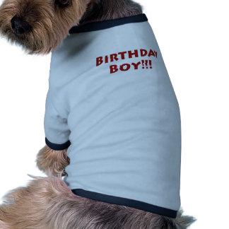 Garçon d'anniversaire ! tee-shirts pour toutous