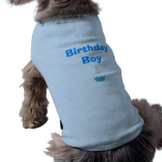 Garçon d'anniversaire manteaux pour animaux domestiques