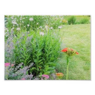 garden art photo print