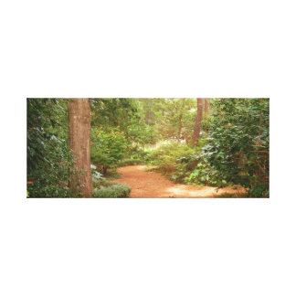 Garden at Maneo North Carolina Canvas Print