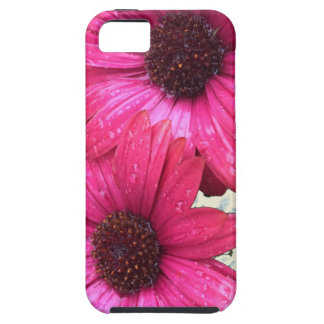 Garden Blooms - Pink Case For The iPhone 5