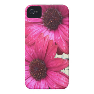 Garden Blooms - Pink Case-Mate iPhone 4 Cases