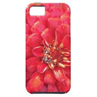 Garden Blooms - Red iPhone 5 Case