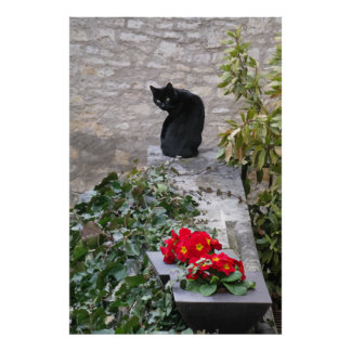 Garden Cat Birthday Print