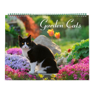 Garden Cats 2017 size large Wall Calendars