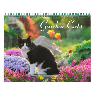 Garden Cats 2017 size medium Calendar