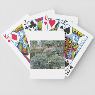 Garden centre with selection of nursery plants bicycle playing cards
