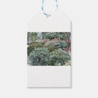Garden centre with selection of nursery plants gift tags