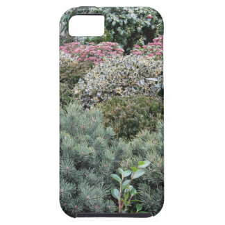 Garden centre with selection of nursery plants iPhone 5 case