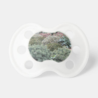 Garden centre with selection of nursery plants pacifier