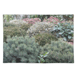 Garden centre with selection of nursery plants placemat