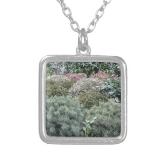 Garden centre with selection of nursery plants silver plated necklace