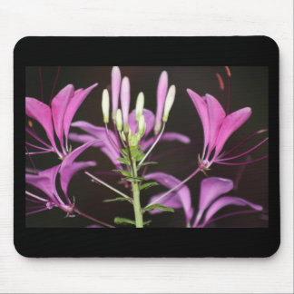 garden flower mouse pad
