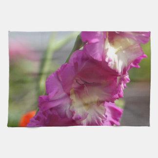 Garden gladiolus (Gladiolus x hortulanus) Towel