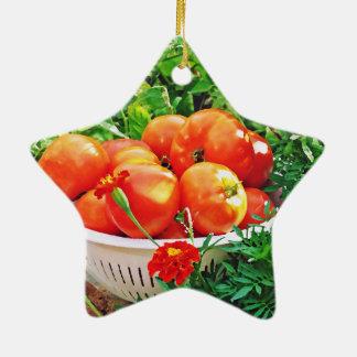 Garden Goodies Ceramic Star Ornament