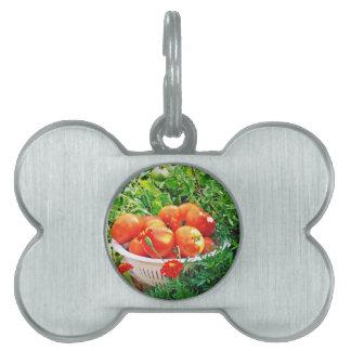 Garden Goodies Pet Name Tags