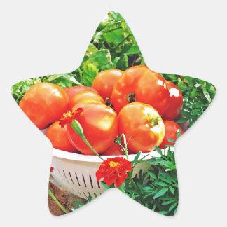 Garden Goodies Star Sticker