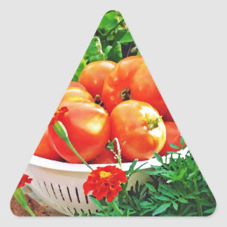Garden Goodies Triangle Sticker