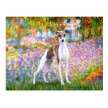 Garden - Italian Greyhound 7 Post Cards