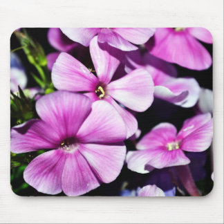 Garden Laura Phlox Flowers Mouse Pad