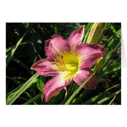 Garden Lily Card