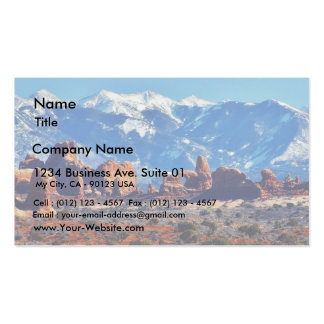 Garden Of Eden At Arches National Park Pack Of Standard Business Cards