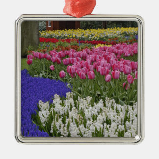 Garden of grape hyacinth, hyacinth and tulips, Silver-Colored square ornament