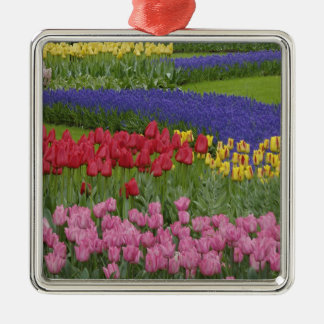 Garden of tulips, Grape Hyacinth and Silver-Colored Square Ornament