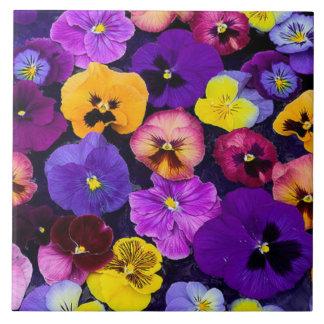 Garden Pansy Ceramic Tiles