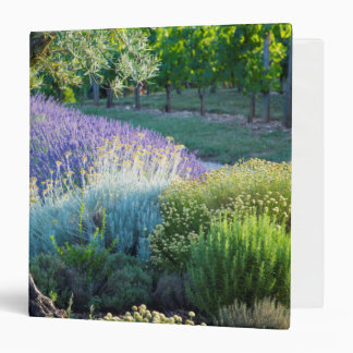 Garden scenic with flowers, France Binders