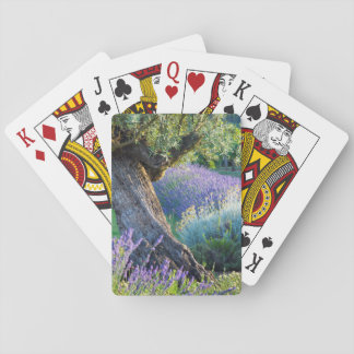 Garden scenic with flowers, France Poker Deck