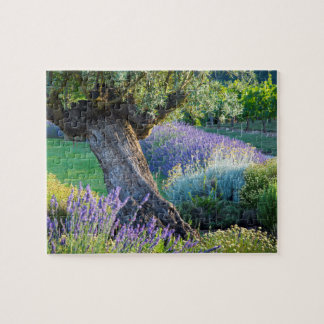 Garden scenic with flowers, France Puzzles