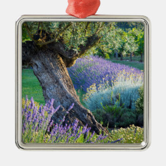 Garden scenic with flowers, France Silver-Colored Square Ornament