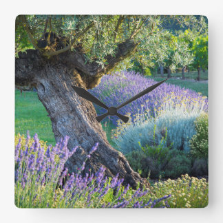 Garden scenic with flowers, France Square Wall Clock