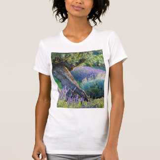 Garden scenic with flowers, France T-Shirt
