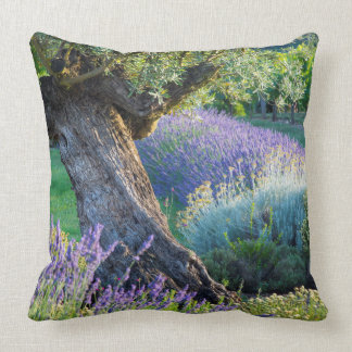 Garden scenic with flowers, France Throw Pillow