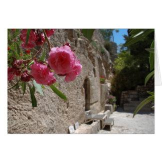 Garden Tomb Jeruselum Isreal Greeting Cards