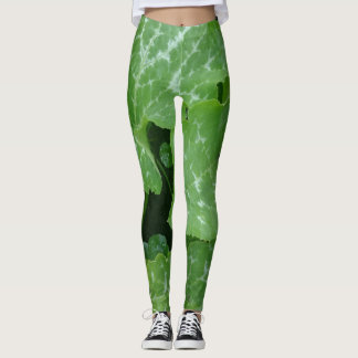 Garden Variety Leggings