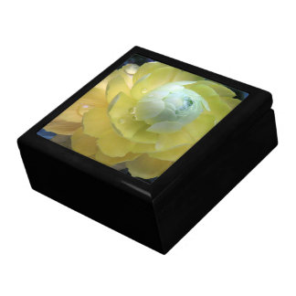 Garden Yellow Ranunculus Flower Floral Gift Box