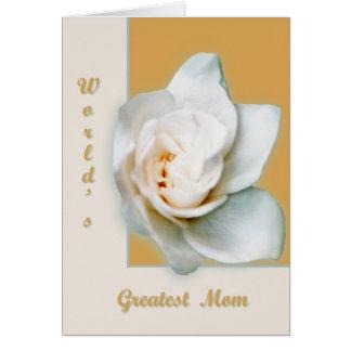 Gardenia Cards