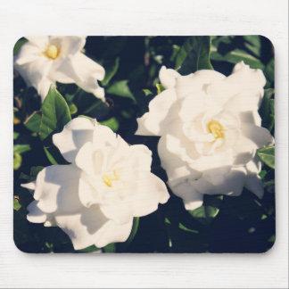 Gardenia flowers mouse pad